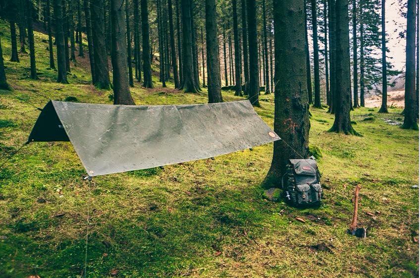 Ridge tarp setup woodland